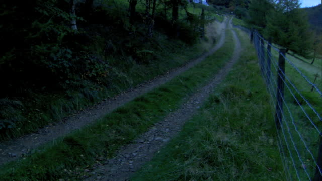 unpaved countryside road, gravel trail tire tracks, trees & grass all around, barbed wired fence along roadside frame. scenic, serene, country,... - mensch und maschine stock-videos und b-roll-filmmaterial