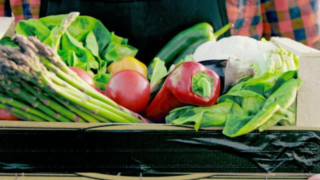 SLO MO CU unkenntlich Bauer tragen eine Kiste voll mit Gemüse