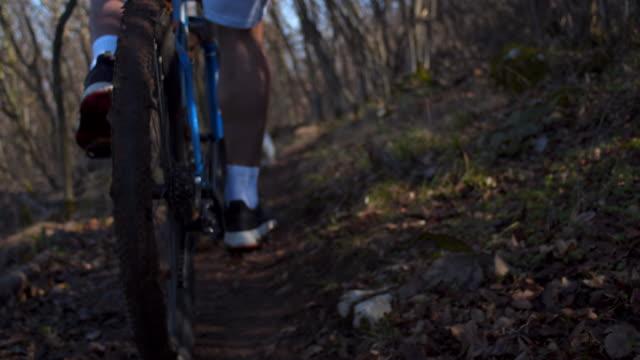 森に沿って彼の自転車に乗って認識できない男性 - クロスカントリーサイクリング点の映像素材/bロール