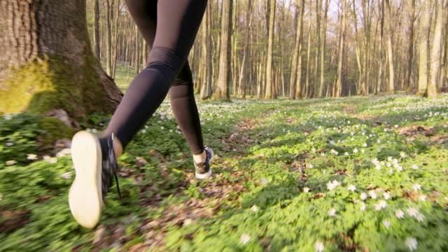 SLO MO TS onherkenbaar vrouw joggen in een forest