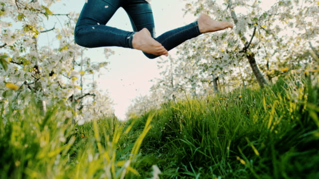 slo mo unrecognizable woman jumping in orchard of blooming cheery trees - orchard stock videos & royalty-free footage