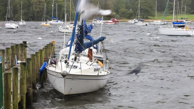 unseasonal storm force winds blowing boats on their moorings on lake windermere in ambleside, lake district uk in the summer. - duck stock videos & royalty-free footage