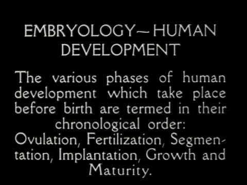 [untitled: part 6: reproductive system and human development] - 4 of 13 - この撮影のクリップをもっと見る 2307点の映像素材/bロール