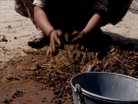 untouchable woman forms pats of dung with hands for fuel northern india mar 77 - dalit stock videos and b-roll footage