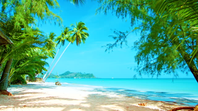 untouched  beach - pacific islands stock videos & royalty-free footage