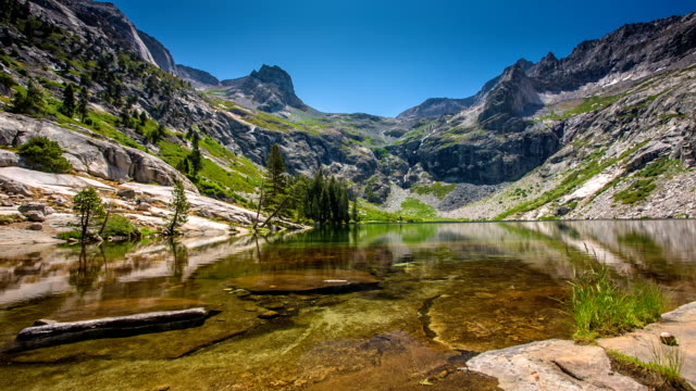 untouched nature - sequoia national park stock videos & royalty-free footage