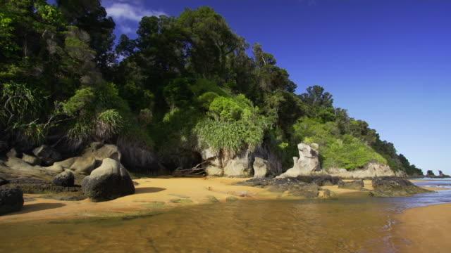 unberührten tropischen strand - neuseeland stock-videos und b-roll-filmmaterial