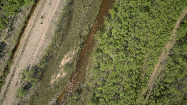 unusual tracking aerial shot of a tributary in the yukon region of canada. - klondike river stock videos and b-roll footage