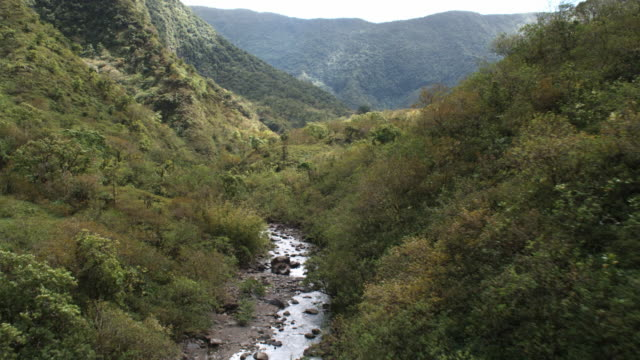 Up a narrow valley on Molokai