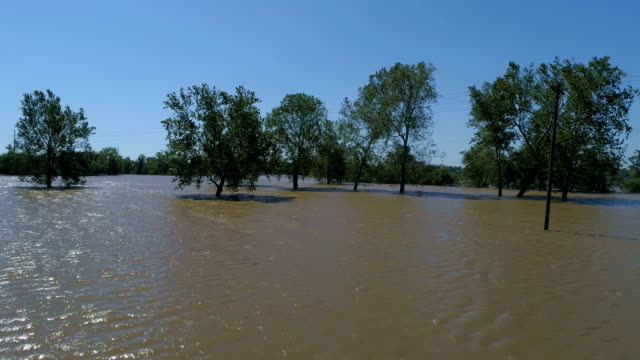 vídeos y material grabado en eventos de stock de arriba y lejos masivas inundaciones grandes parcela de terreno completamente inundado por el huracán harvey árboles y bosque inundado drone aéreos ver - gulf coast states
