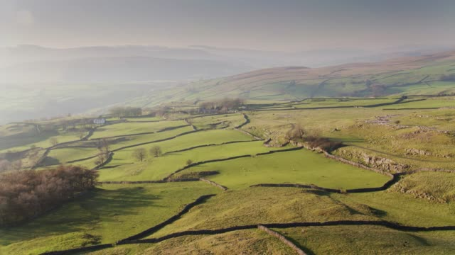 Upland Farms in the Yorkshire Dales - Drone Shot