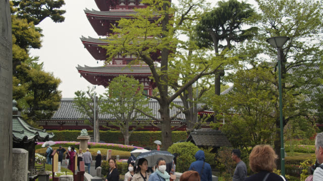 upward tilting handheld shot of sensō-ji, asakusa, tokyo - temple building stock videos & royalty-free footage