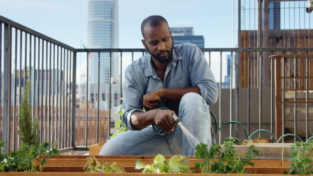 urban gardener watering plants - balcony stock videos & royalty-free footage