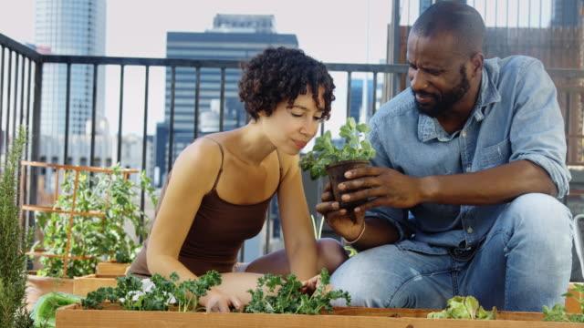 vidéos et rushes de jardiniers urbains bénéficiant d'une fragrance à base de plantes - jardin potager