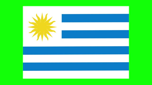 uruguaian flag animation on green screen background, chroma key, loopable - uruguaian flag stock videos & royalty-free footage