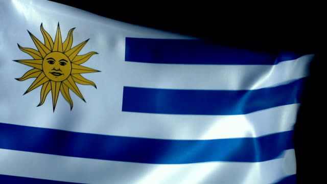 uruguaian flag flapping - uruguaian flag stock videos & royalty-free footage