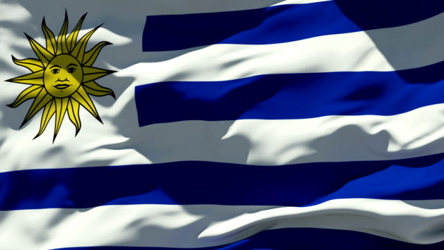 bandiera dell'uruguay - uruguay video stock e b–roll