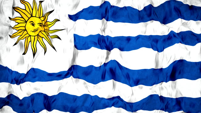 uruguaian flag - uruguaian flag stock videos & royalty-free footage