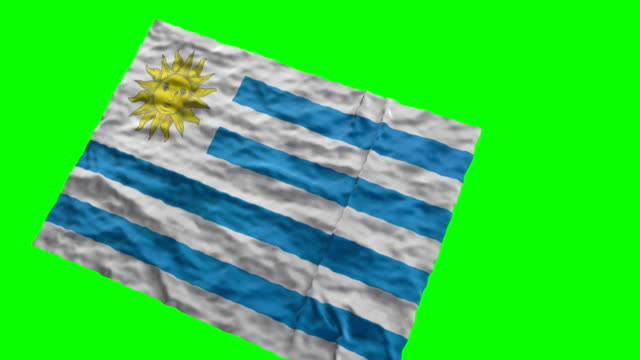 uruguaian stadium flag. waving on green screen - uruguaian flag stock videos & royalty-free footage