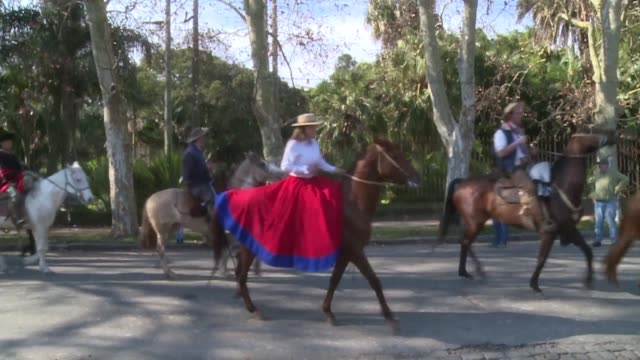vídeos de stock e filmes b-roll de uruguay commemorates constitution day the day the country adopted its first constitution in 1830 with a parade in montevideo that includes horse... - gaúcho