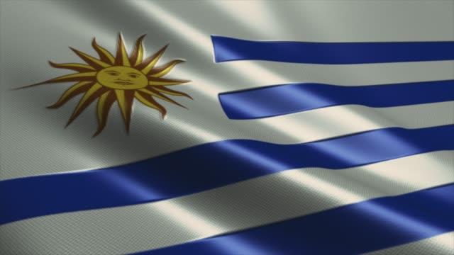 uruguay flag high detail - looping stock video - uruguaian flag stock videos & royalty-free footage