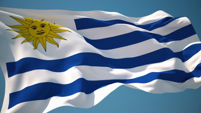 4k uruguay flag - loopable - uruguaian flag stock videos & royalty-free footage