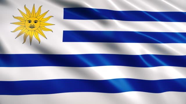 uruguay flag - uruguaian flag stock videos & royalty-free footage