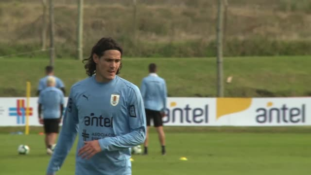 vídeos y material grabado en eventos de stock de uruguay's striker edinson cavani is one of the key players of la celeste - uruguay