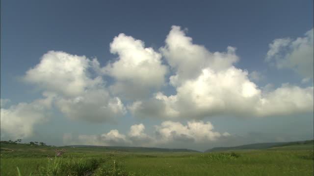 Uryu-numa Wetlands In Hokkaido