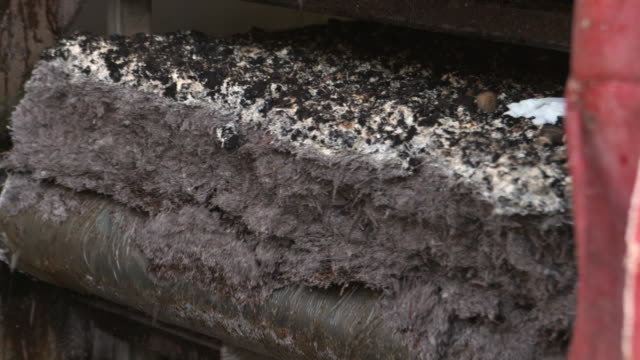 used mushroom compost falls from rack, uk - organic farm stock videos & royalty-free footage