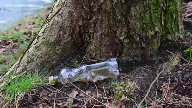 used plastic bottle laying on the ground of a forest close to a lake. unrecognizable person takes. germany - root stock videos & royalty-free footage
