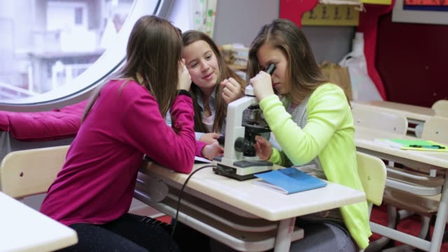 using microscope in biology class - school science project stock videos & royalty-free footage