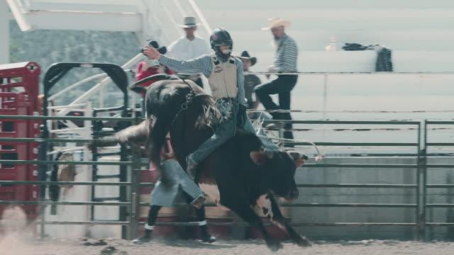 vidéos et rushes de rodéo de utah bull riding - taureau