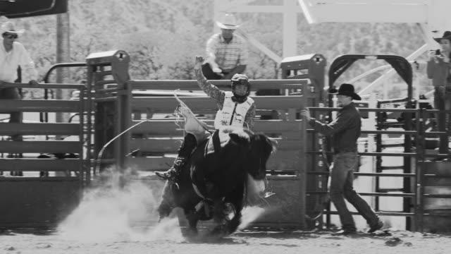 stockvideo's en b-roll-footage met utah stier rijden rodeo - texas longhorn