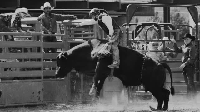 Utah Stier Reiten-rodeo