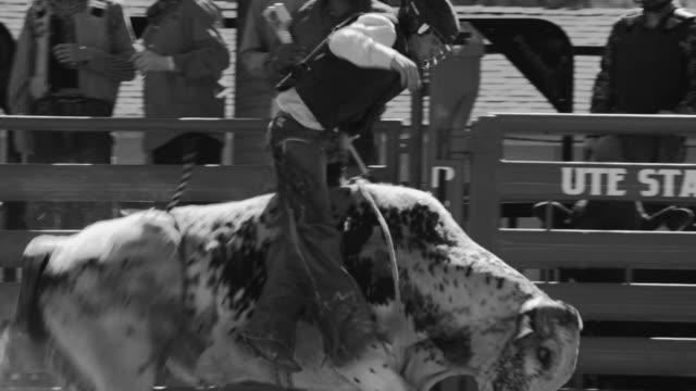 utah bull riding rodeo - bucking stock videos & royalty-free footage