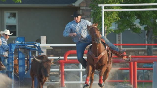 Utah Cowboy Fang eine Kalb