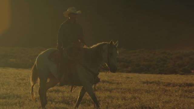stockvideo's en b-roll-footage met utah cowboy rijden in de zonsondergang - prairie