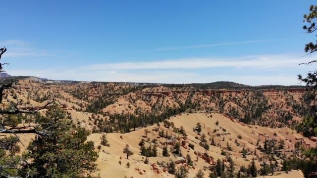 ユタ州の砂漠レッド キャニオン - ロックストラータ点の映像素材/bロール