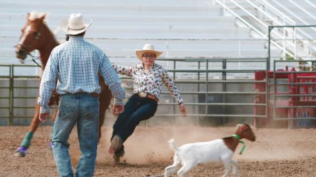 stockvideo's en b-roll-footage met utah geit rodeo - texas longhorn