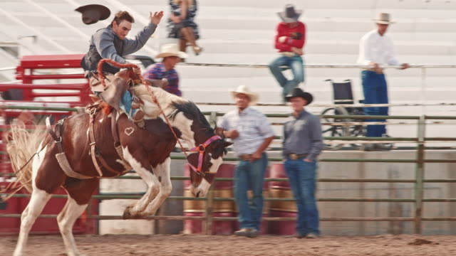 utah horse riding rodeo - rodeo stock videos & royalty-free footage