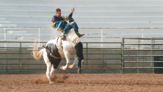 utah horse riding rodeo - stunt person stock videos & royalty-free footage