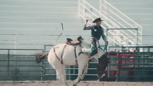 utah horsel riding rodeo - pursuit sports competition format stock videos and b-roll footage