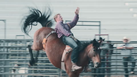 utah horsel riding rodeo - rodeo stock videos & royalty-free footage