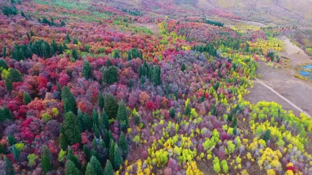 utah man justin mcfarland recorded this incredible drone footage of his home state. he captured an amazing array of fall colors on display at... - utah stock videos & royalty-free footage