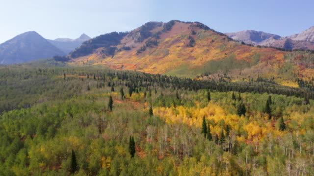 vidéos et rushes de chaîne de montagnes de l'utah dans les couleurs d'automne - utah