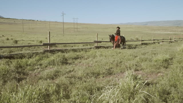 utah rancher and horse - ranch stock videos & royalty-free footage