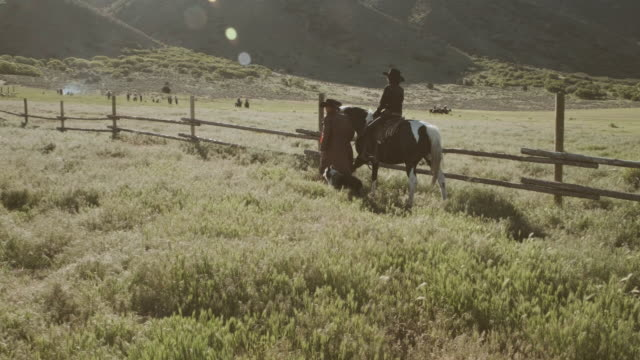 utah rancher and horse - sheepdog stock videos & royalty-free footage