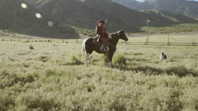 utah rancher and horse - only mature men stock videos & royalty-free footage