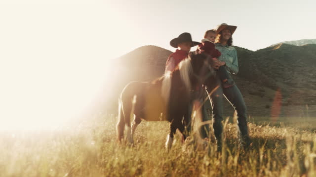 utah rancher family - women doing farm animals stock videos and b-roll footage